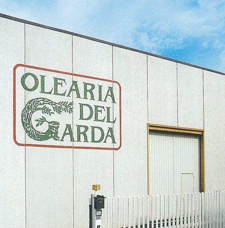 Olearia del Garda